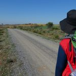 Could you walk the Camino de Santiago?