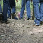 Walking more: what could it do for us?